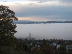 Nebel im Mittelland